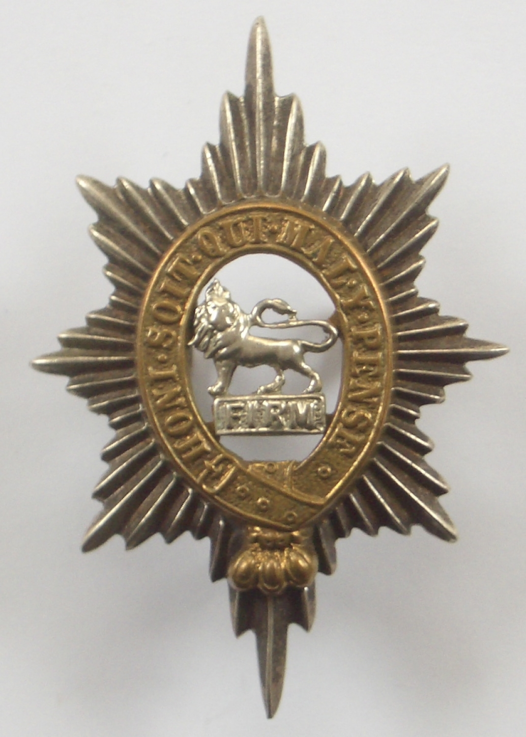 Worcestershire Regiment Officer's cap badge