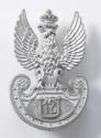 Polish 12th Ulans rare WW2 plastic badge  - picture 1