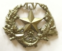 4th VB Cameronians glengarry badge - picture 1