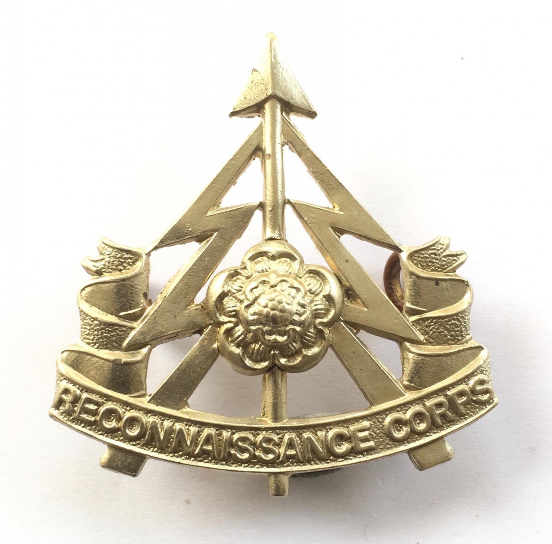 Reconnaissance Corps (49th Div) WW2 badge