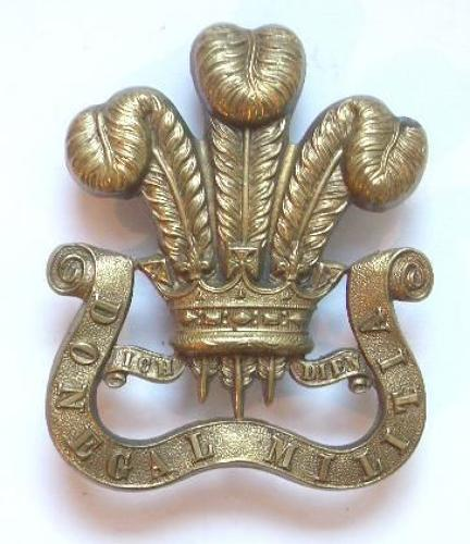 Irish. Prince of Wales's Own Donegal Militia Victorian OR's glengarry badge circa 1874-81.