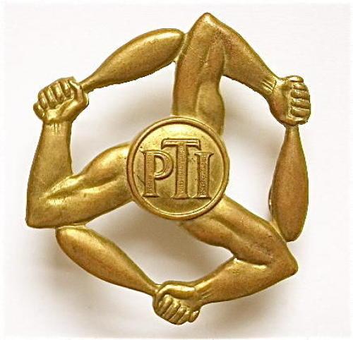 RAF Large PTI (Physical Training Instructor) arm badge