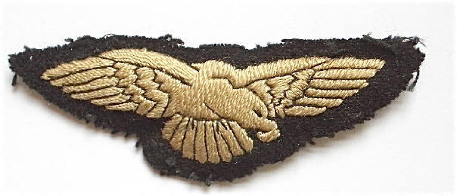 RAF Preliminary Pilot's wing.