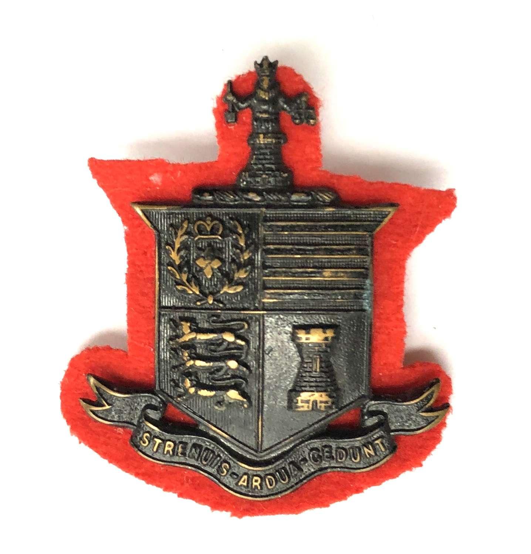 Southampton University OTC first pattern cap badge