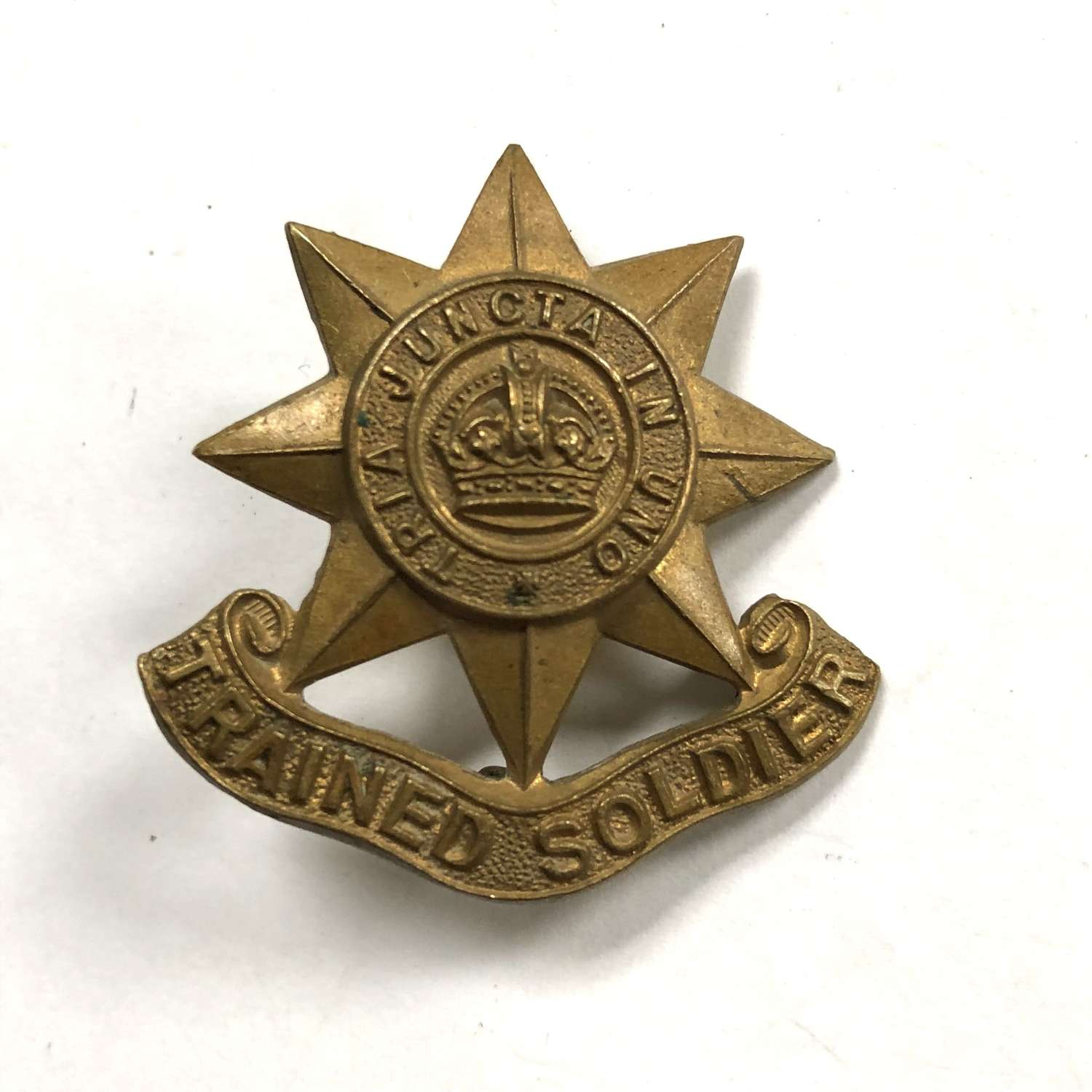 Guards Trained Soldier's arm badge